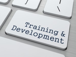 Creating A Top-Notch Training Program for Your Startup Company